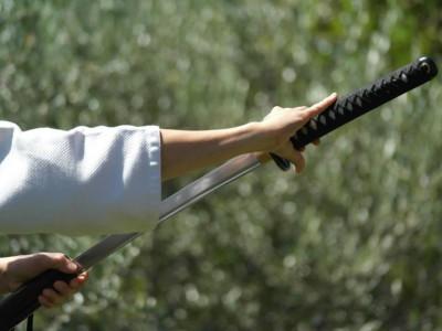 L'estrazione della spada nella pratica dello Iaido