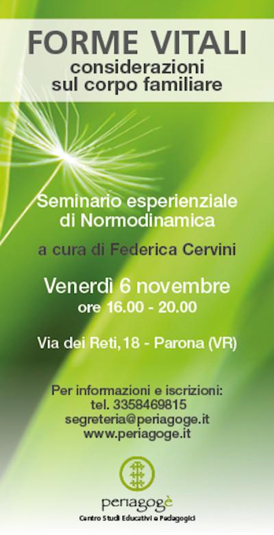 CERVINI-16 2 copia